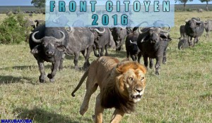 image front citoyen 2016