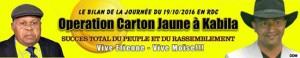 operation-carton-jaune